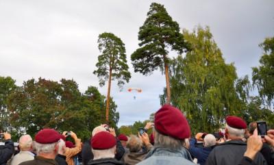 Fallskärmsjägarnas Dag 2013 - En 70-årig fallskärmsjägare strax före landning